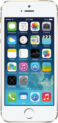 Мобильный телефон Apple iPhone SE 128 Gb Gold (MP 882 RU/A) мобильный телефон apple iphone se 32 gb space gray mp 822 ru a