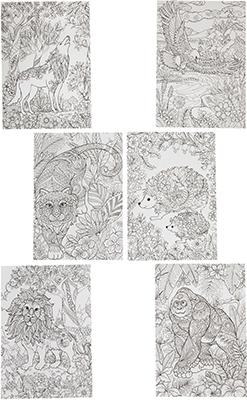 Набор для раскрашивания Bondibon  раскрасок антистресс  лесу 6 листов 30х21 см ВВ1711