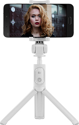 Штатив Xiaomi Mi Selfie Stick Tripod FBA 4071 US (XMZPG 01 YM) серый штатив deppa selfie mini black 45001
