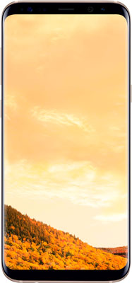 Смартфон Samsung Galaxy S8 Plus (SM- 955) золотистый