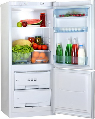 Двухкамерный холодильник Позис RK-101 белый двухкамерный холодильник позис rk 101 серебристый металлопласт