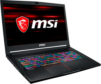 Ноутбук MSI GS 73 Stealth 8RF-028 RU (9S7-17 B 712-028) Black drift 53 006 00 stealth 2 lens replacement kit