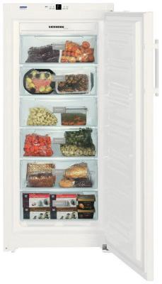 Морозильник Liebherr GN 3113 (GN 31130) цена