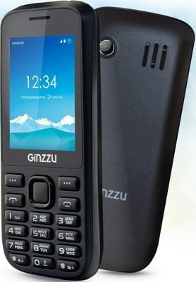 Мобильный телефон Ginzzu M 201 черный цена и фото