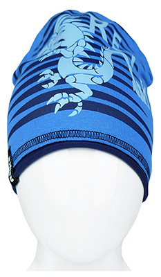 Шапочка Reike Драконы синяя р.52 RKNSS 17-DRG1 pelican wild space 116 146 р р синяя