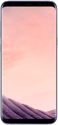 Смартфон Samsung Galaxy S8 Plus (SM-G955) фиолетовый samsung galaxy s8 sm g950 black