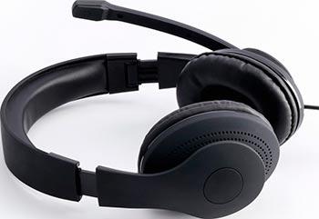 Фото - Гарнитура для ПК Hama HS-USB300 черный 2м мониторные оголовье (00139924) микрофон проводной hama allround 00139906 2м black