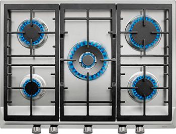 Встраиваемая газовая варочная панель Teka EX/70.1 5G AI AL DR CI