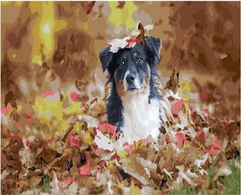 Картина по номерам Molly (40х50) ЗАПАХ ОСЕНИ (28 цветов) на подрамнике KH0205