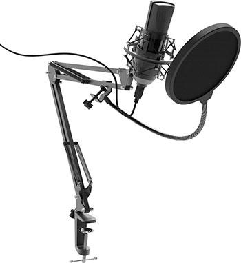 Фото - Микрофон студийный Ritmix RDM-180 Black микрофон ritmix rdm 160 black