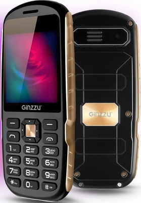 Мобильный телефон Ginzzu R1D черный цена