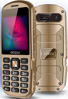 Мобильный телефон Ginzzu R1D шампань
