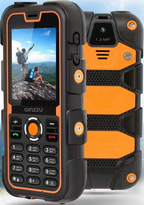 Мобильный телефон Ginzzu R2D цена
