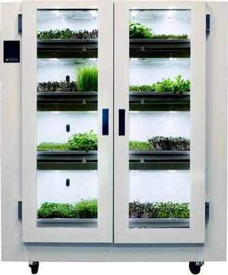 Автоматический гроубокс для выращивания микрозелени Urban Cultivator