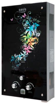 Газовый водонагреватель Oasis Glass 24 RG цветной цена