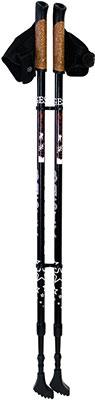 цены Палки для скандинавской ходьбы Gess Basic Walker (двухсекционные) GESS-919