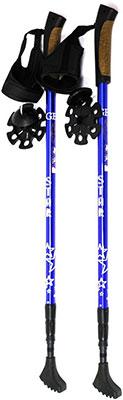Палки для скандинавской ходьбы Gess Star Walker (трехсекционные) GESS-911