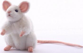 Мягкая игрушка Hansa Creation 5323 Белая мышь 16 см мягкая игрушка сова hansa сова белая искусственный мех синтепон белый 18 см 6155