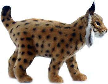 Мягкая игрушка Hansa Creation 4858 Испанская рысь 35 см мягкая игрушка hansa creation 4089 детеныш белого тигра 26 см