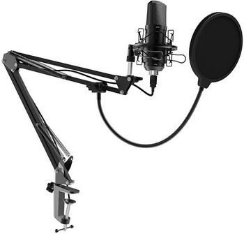 Фото - Студийный микрофон Ritmix RDM-169 Black микрофон ritmix rdm 160 black